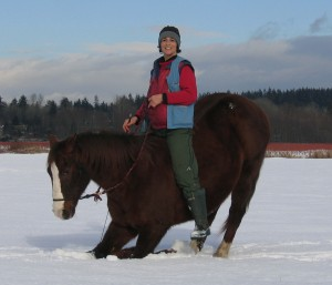 Only healthy and strong horses should keel under a rider