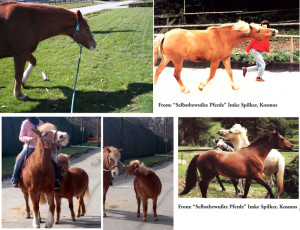 Left: these horses and ponies want to get going! Right: an invitation to play ! Links: diese Pferde und Ponies wollen loslaufen! Rechts: eine Einladung zum Spielen !