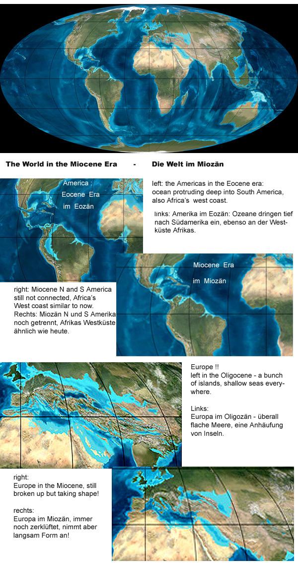 The world is slowly starting to look recognizable - see the changes from the Eocene to the Miocene! Die Welt wird langsam für uns erkennbar - welche Änderungen vom Eozän bis zum Miozän!