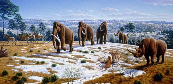 At the end of the ice age all Megafauna died out. Am Ende der Eiszeit starben die Riesentiere aus.