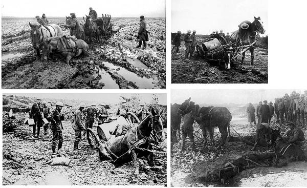 Horses were better than mechanized vehicles in deep mud - many drowned or died of exhaustion. Pferde waren in tiefem Matsch besser als mechanisierte Fahrzeuge - viele ertranken oder starben aus Erschöpfung.