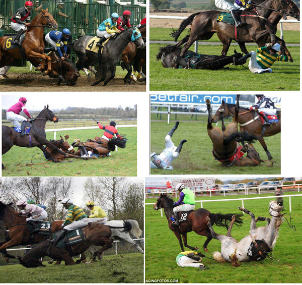 When they fall it is very often fatal - jockeys have a better survival rate. Wenn sie stürzen ist es oft tödlich - Jockeys haben bessere Überlebenschancen.