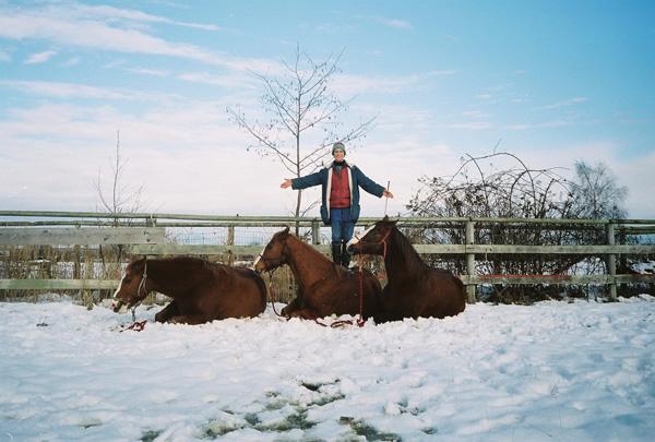Your horses trust you - you can trust your horses. All is cool! Ihre Pferde vertrauen Ihnen - Sie können den Pferden vertrauen. Alles gebogt!