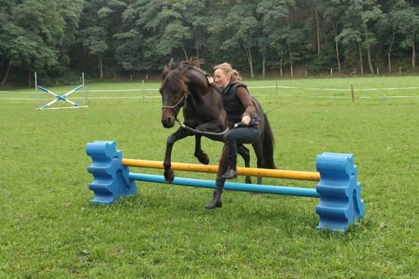 Very motivating! Go over the jump together! Sehr motivierend! Gemeinsam hüpfen!