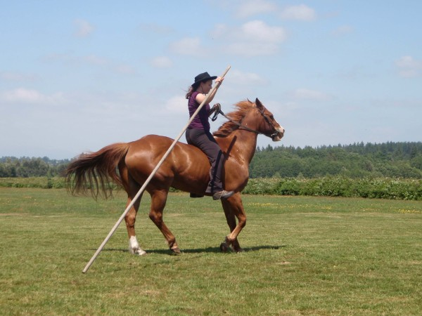 At the start your horse might be nervous - just drag the Garrocha to get him used to it. Anfangs mag das Pferd nervös sein - schleppen Sie die Garrocha nur, um es daran zu gewöhnen.