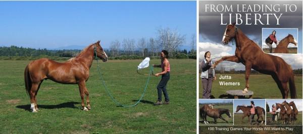 Desensitizing a horse to a frightful object - the Book tells you how to de-spook your horse! Desensibilisierung eines Pferdes - das Buch zeigt, wie man sein Pferd bombensicher macht!