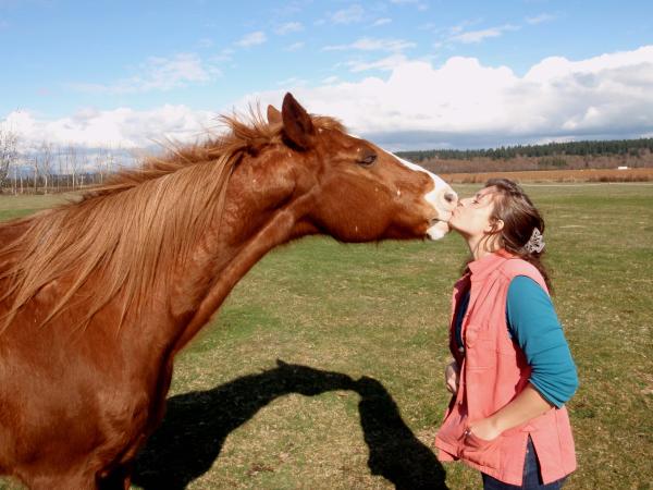 Horse kisses like this are trained exercises, although they can be given with much abandon! Pferdeküsse wie dieser sind antrainierte Übungen, obwohl sie mit viel Genuß gegeben werden können!